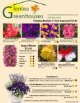 Glenlea Catalogue 2013-1