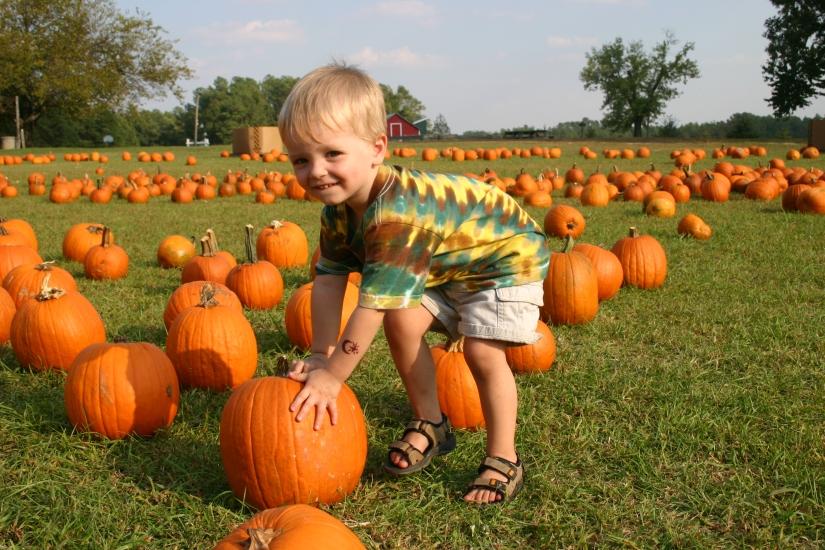 kid in pumpkin patch